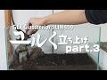 【流木】スリム水槽をユルく立ち上げ part.3|アクアリウム動画