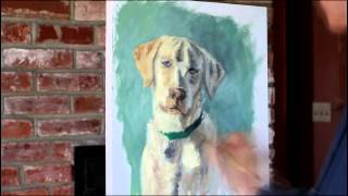 Yellow Lab - Speed Paint
