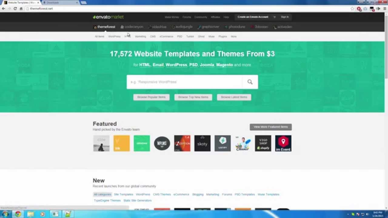 How To Download Almost Any Premium Website Template