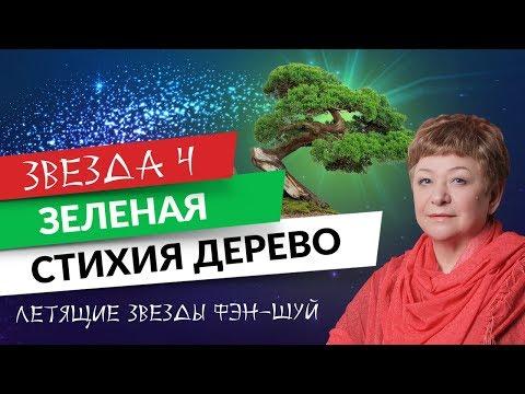 0 Летящие звезды фэн-шуй. Звезда 4 Зеленая. Стихия Дерево
