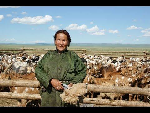 Al hilo del Mundo - Mongolia
