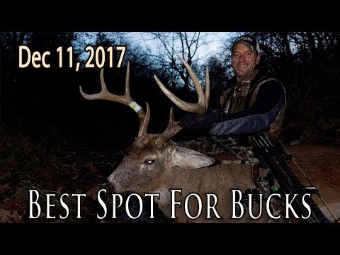 Best Spot for Bucks | Midwest Whitetail