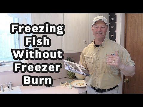 The Best Way To Freeze Fish And Avoid Freezer Burn | Thundermist Quick Fishing Tips