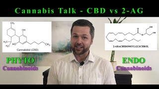 Cannabis Talk - Cannabidiol (CBD) and 2-Arachidonoylglycerol (2-AG)