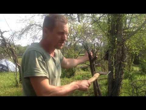 Как легко и быстро удалить дерево с корнем