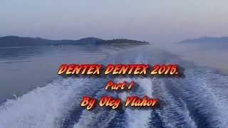 Spearfishing, Podvodni ribolov, Oleg Vlahov, Dentex Dentex I, 2015