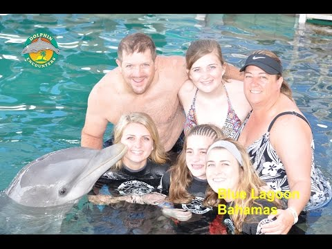 Blue Lagoon Dolphin Encounter, Nassau Bahamas