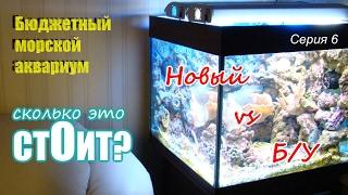 Сколько стоит морской аквариум? Бюджетный морской аквариум.6 Серия