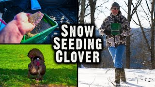 How to Snow Sęed Clover: Super EASY Jump Start on Spring Food Plots (609)