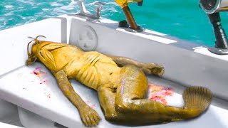 15 Strangest Things Recently Discovered In Thailand