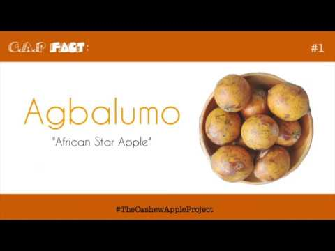 A is for ..... Agbalumo?