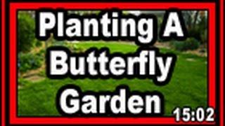 Planting A Butterfly Garden - Wisconsin Garden Video Blog 682