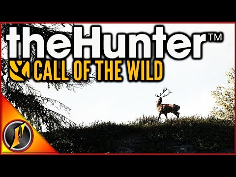 Idea to Make COTW more Fun | theHunter Call of the Wild