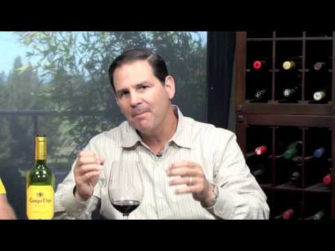 Campo Viejo Rioja Tempranillo 2010, Two Thumbs Up Wine Review