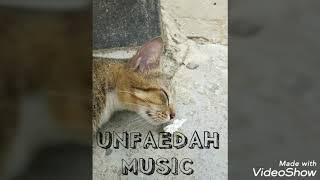 Download UNFAEDAH MUSIC -- Rio sinaga ft ikbal musisi jalanan ---