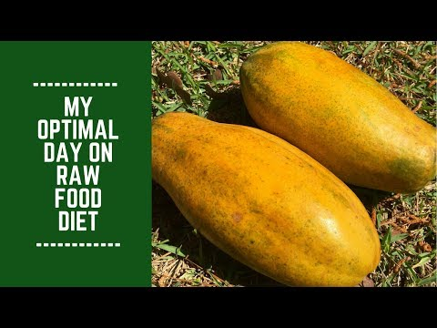 My Optimal Day on Raw Food Diet
