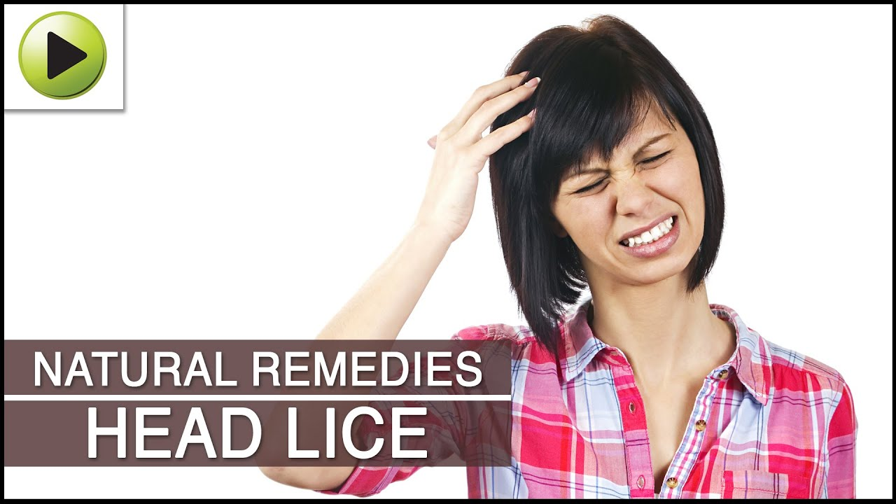 How To Get Rid Of Head Lice With Natural Ingredients