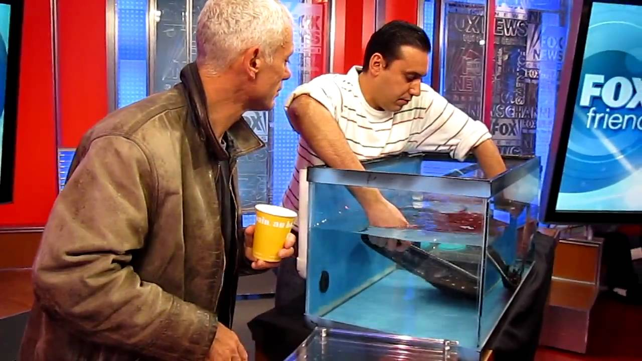 AquaScapeOnline - Pedro showing Jeremy Wade how to handle ...