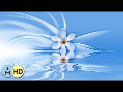Spiritual Sounds: Zen Sounds, Best Relaxing Spa Music, Buddha Dreamer, Inner Peace, Massage