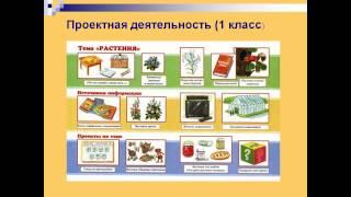 Проектная деятельность на уроках в начальной школе