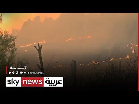 الجزائر/وفاة 25 عسكريا خلال محاولات إخماد حرائق الغابات