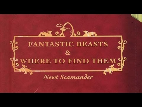 FANTASTIC BEASTS AND WHERE TO FIND THEM To Be A Mega Trilogy - AMC Movie News