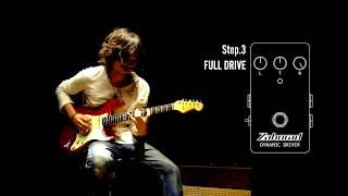 Zahnrad DYNAMIC DRIVER(ZDD)Demo