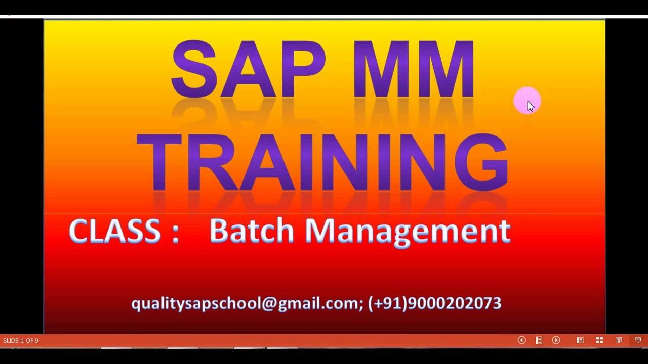 batch management in sap mm pdf