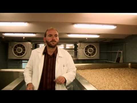 How the Traditional Czech Beer is Brewed: Litovel Brewery