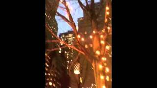 BETTINA WERNER: Lighting of the New York Stock Exchange