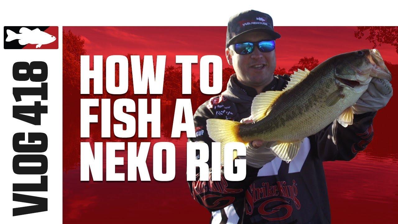 Cody meyer fishing the strike king kvd perfect plastic for Lake o the pines fishing report