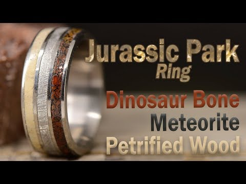 DIY Jurassic Park Ring: Made From Dinosaur Bone, Meteorite, Petrified Wood, and Titanium
