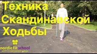 Техника Скандинавской ходьбы за 5 минут