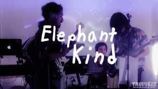 Elephant Kind - Scenario II (Live at Provoke! in the Garage #15)