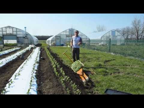 How to Use a PaperPot Transplanter