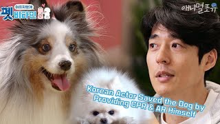 Korean Actor Saved the Dog by Providing CPR & AR Himself