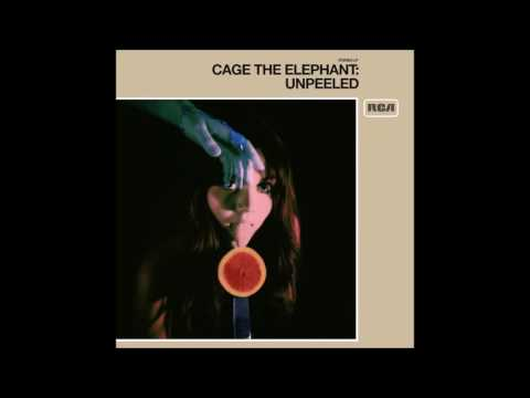 Cage the Elephant - Whole Wide World (Live)