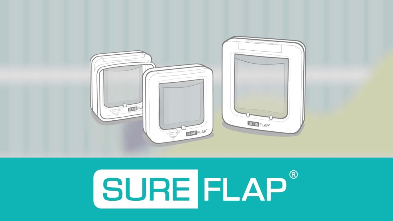 Sureflap Microchip Pet Doors Youtube