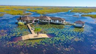 Surviving 24hr on Abanḋoned Mansion DEEP In Swamp!! (Pet Alligator) *total isolation*