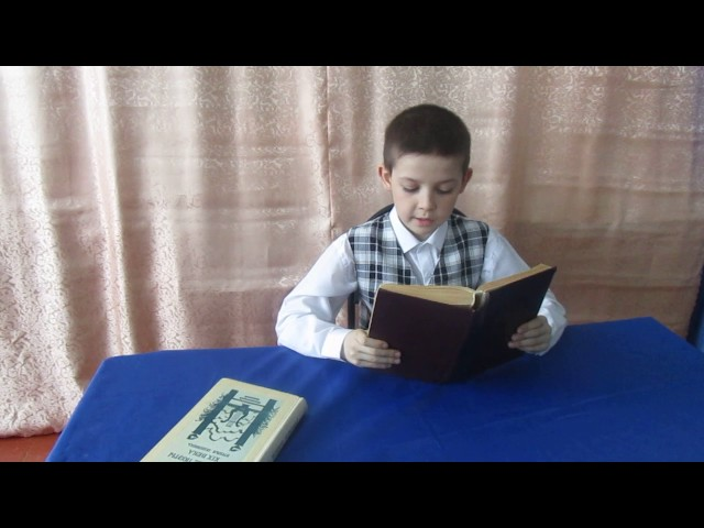 Изображение предпросмотра прочтения – АлександрБочкарёв читает произведение «Есть в осени первоначальной...» Ф.И.Тютчева