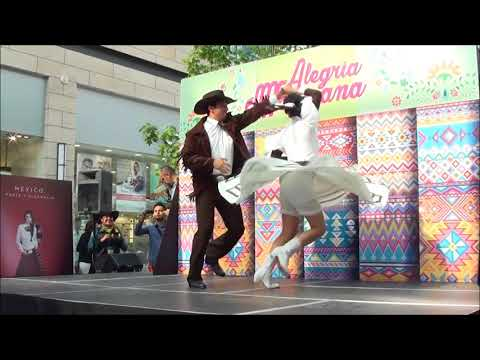 Ballet Folklórico Mazatliltic - El circo