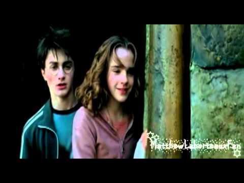 what book do ron and hermione start dating