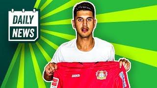 Transfer News: Palacios zu Leverkusen! Everton holt Ancelotti?