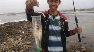 mancing belanak dengan botol 2