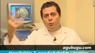 Hamilelikte 7. ay - Dr. Kağan Kocatepe