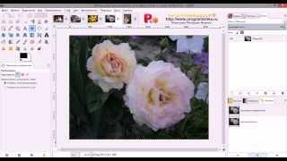 Как сделать картину маслом из фотографии в GIMP.