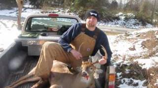 big buck killed with bb gun