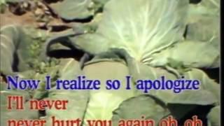I'm Sorry My Love - Video Karaoke