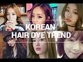 Korean Hair Dye Trend & Self Hair Dying Tips | Wishtrend
