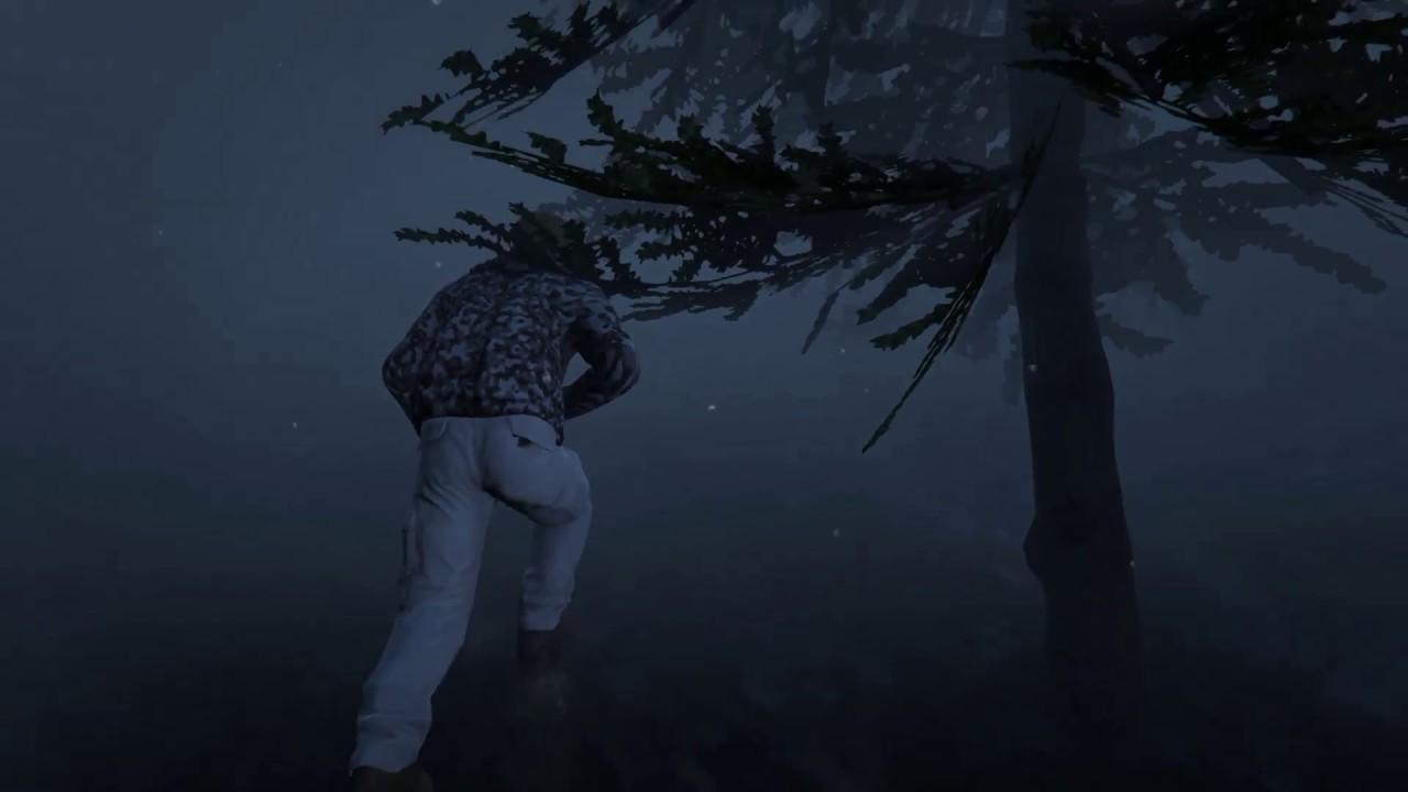 GTA 5 alebal missions pack So now what? | <alebal web